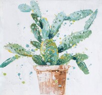 Kerridge Cactus Plant No2 Canvas  30x30cm