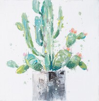 Kerridge Cactus Plant No3 Canvas  30x30cm