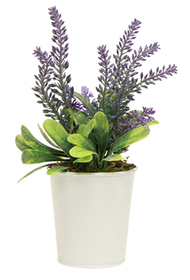 French Country Potted Lavender Small 20cmLx12cmWx22cmH