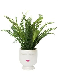 Stoneleigh & Roberson Fern in Ceramic Lady Head Planter 39cm Dia